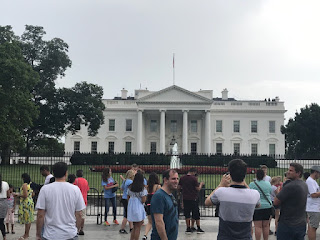 Traveling Vegan: Washington, D.C.