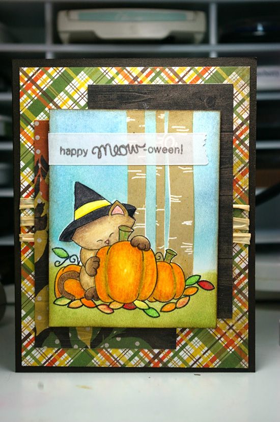 Fall Cat Card for by Zoey and the Furballs for  Newton's Nook Designs Inky Paws Challenge -  Newton's Perfect Pumpkin Stamp set