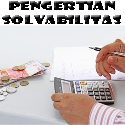 Pengertian Solvabilitas