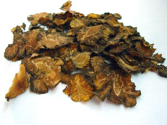 Củ Xuyên Khung - Ligusticum wallichii - Nguyên liệu làm thuốc Chữa Cảm Sốt