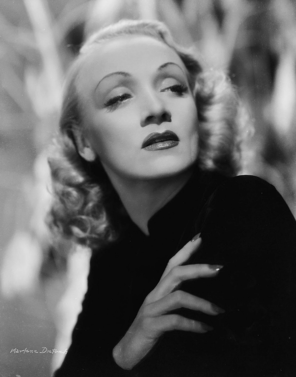 Marlene Dietrich Annex2: It's The Pictures That Got Small ...: THE WEDNESDAY