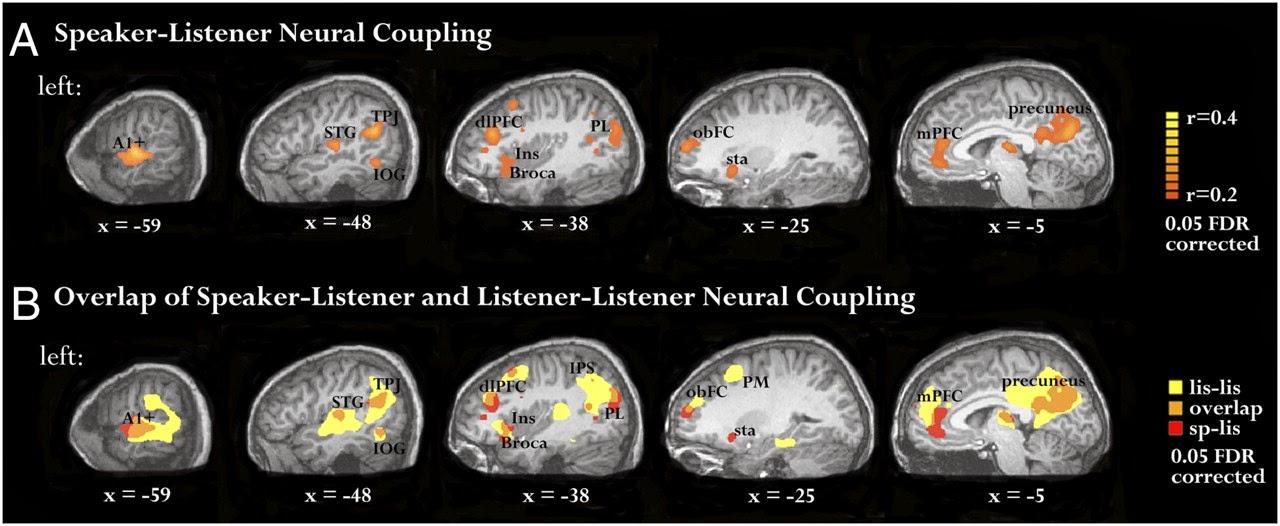 Aree attivate del nostro cervello - Storytelling