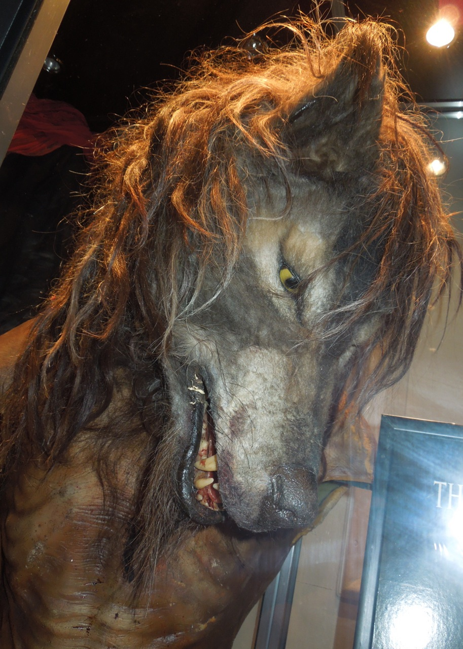 Werewolf prosthetics from Dog Soldiers on display ...