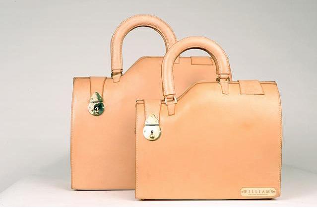 satchels by sarah jane williams