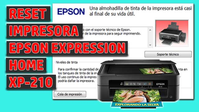 Reset impresora EPSON Expression Home XP-210