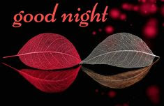 Latest good night images free download wallpaper photos for Whatsapp images good night love images
