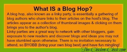 What is a Blog Hop? Explained!