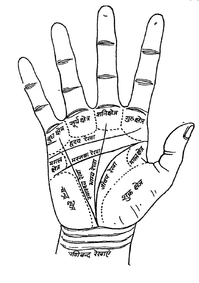 Hindi Hast Rekha Chitra - Indian Palmistry | INDIAN PALM