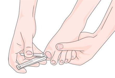 Coupez les ongles de chaque semaine