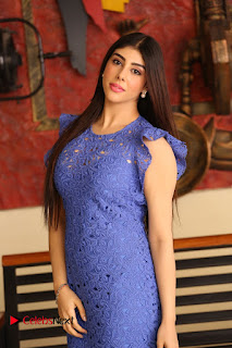Actress Aditi Singh  Pictures in Short Dress at Movie Interview  0065.JPG