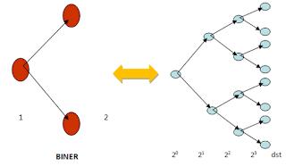 Siklus Pertumbuhan sel geometrik Bakteri