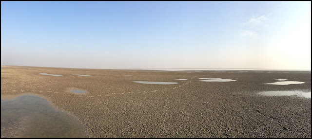 Little Rann of Kutch (LRK)