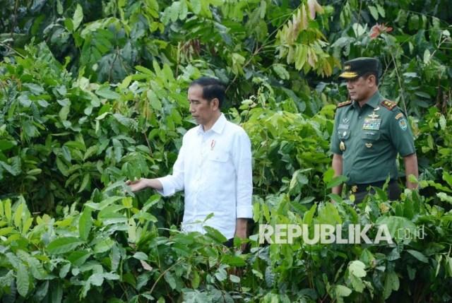 Ini Kata Tim Jokowi soal Batalnya Pelantikan Letjen Doni Monardo