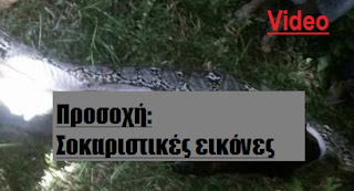 http://greece-salonika.blogspot.com/2017/03/video_29.html