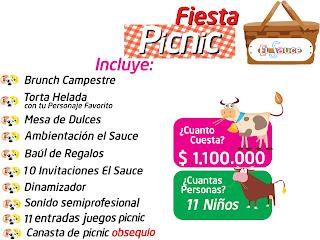 Fiesta picnic cumpleaños campestre Bogota