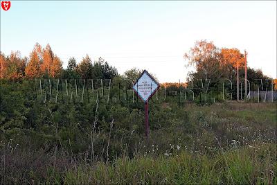 Растение, включённое в Красную книгу Республики Беларусь Слива колючая (терна)