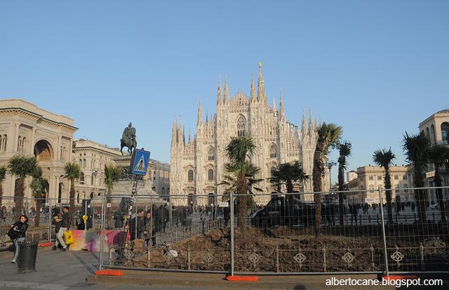 Milano, palme a banani in piazza Duomo