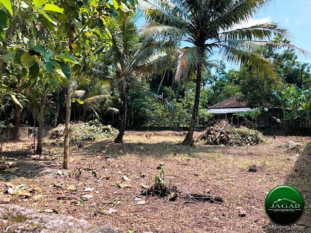 Tanah Dijual di Desa Wisata Kalakijo, Pajangan