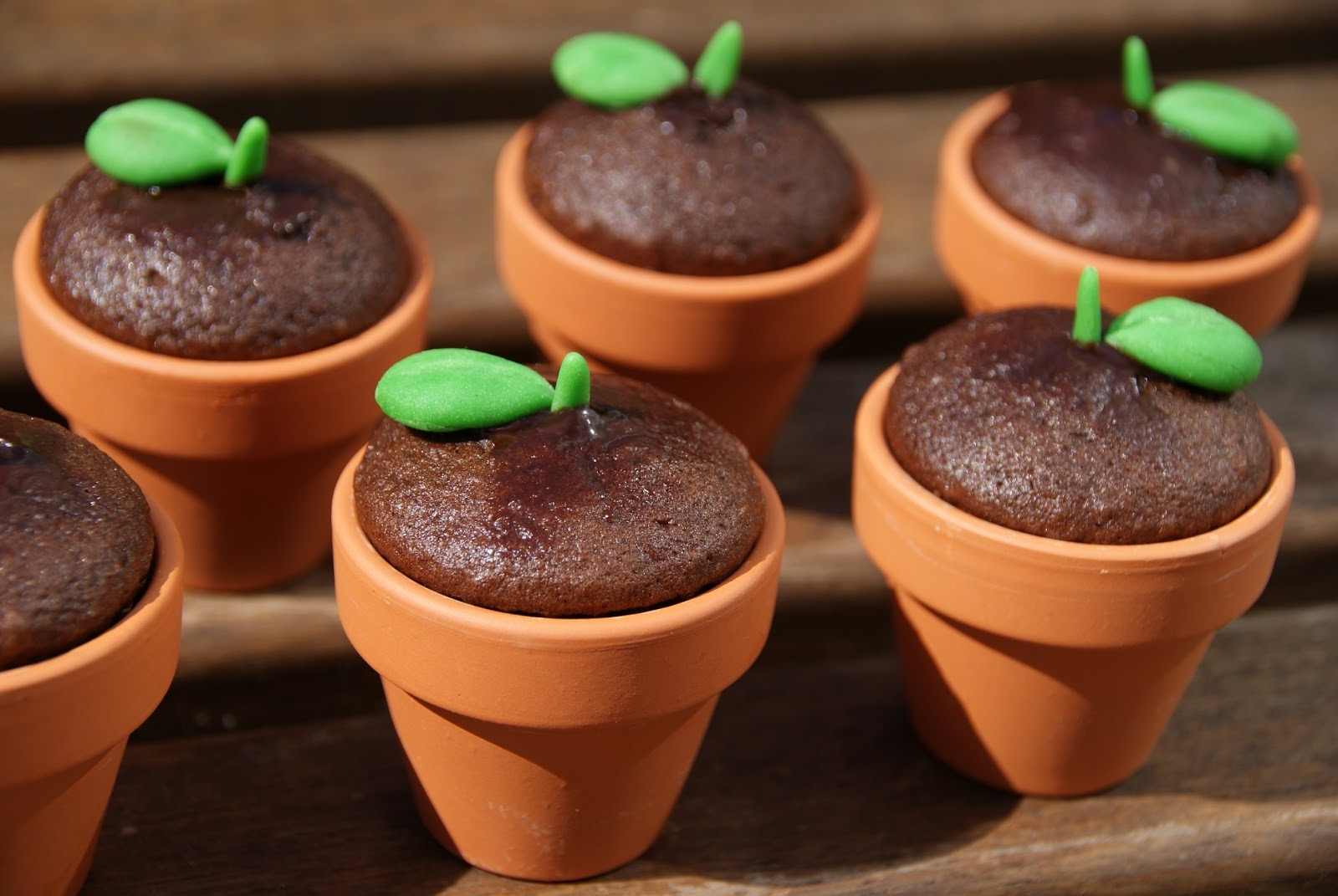They Don\\u0027t Look Like Much Out Of The Pot But Presentation Is Everything In This Case. & Flower Pot Cupcake Cases \u0026 ... Be A Good Time To Bring Out My New ...