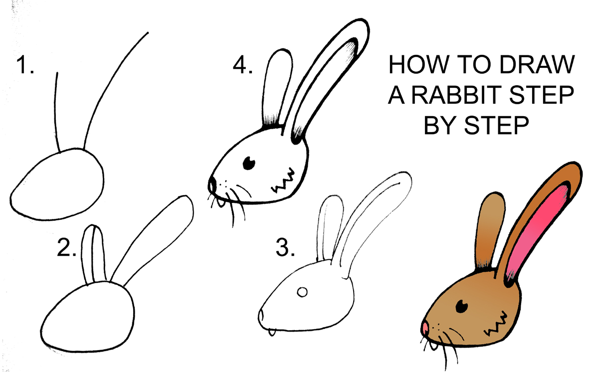 DARYL HOBSON ARTWORK: How To Draw A Rabbit Step By Step
