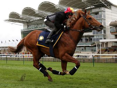 winning racing tips, betting tips, eric winner,