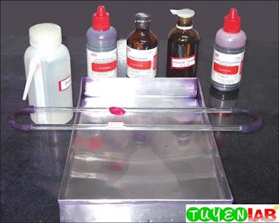 Fig. 10: Gram's stain kit