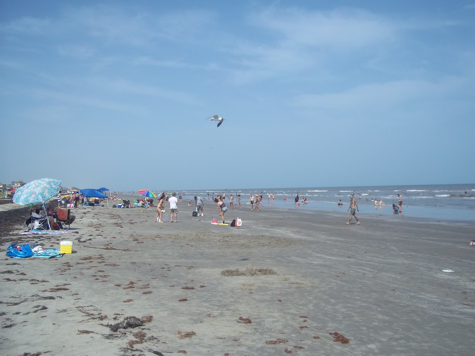 Happy Campers: Galveston Island State Park