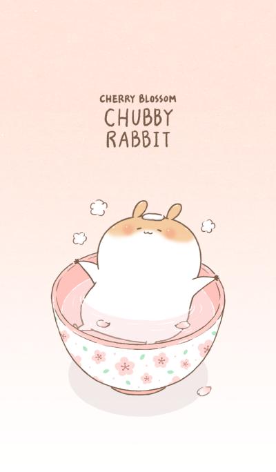 Chubby Rabbit-Cherry Blossom