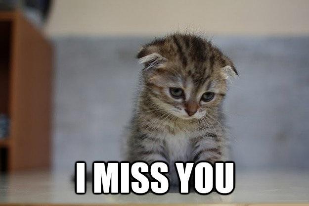 i miss you meme  15