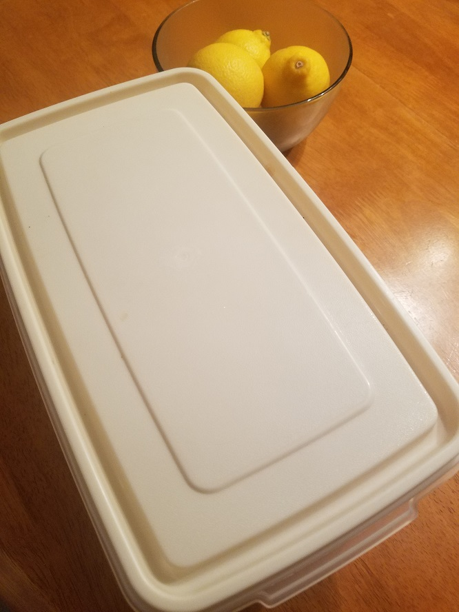freezer container with lemons in a bowl with italian lemon ice in it