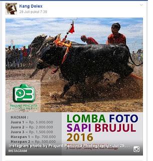 Lomba Fotografi Probolonggo Agustus 2016
