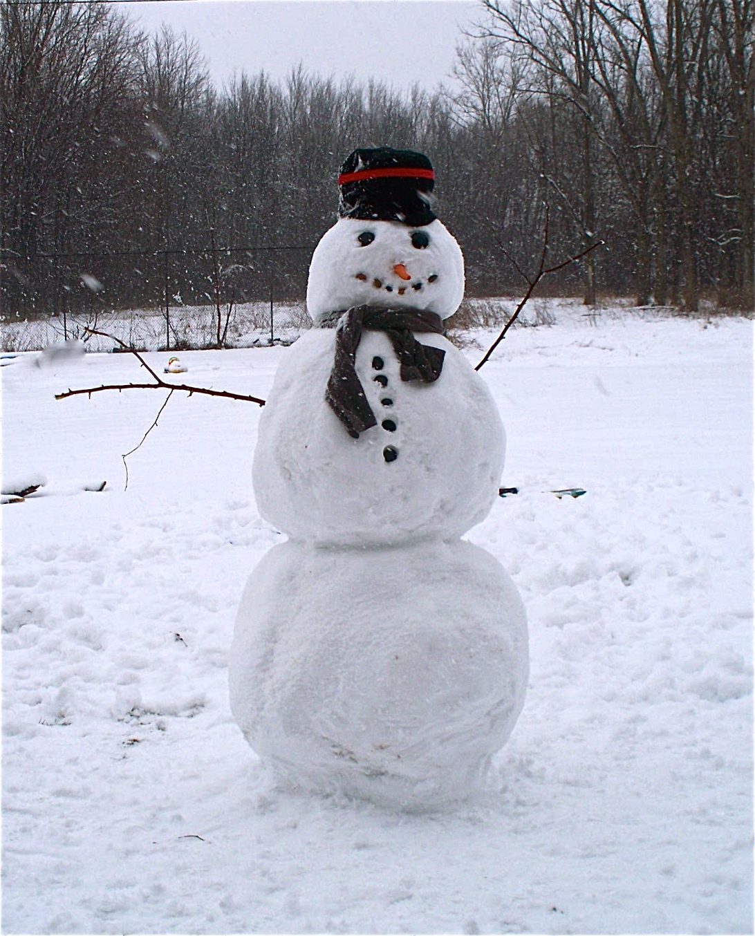 The Queen Of Re Making A Snowman