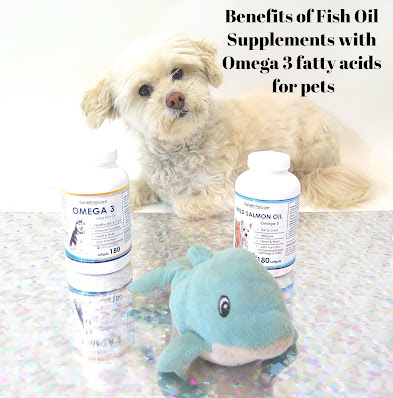 Dog health, Pet health, Omega 3 Supplements for Dogs