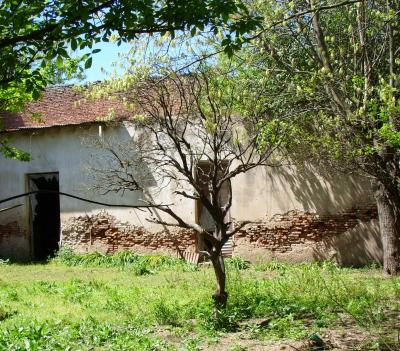 Misterios en canarias v la casa de los miedos - Casas de campo en gran canaria ...