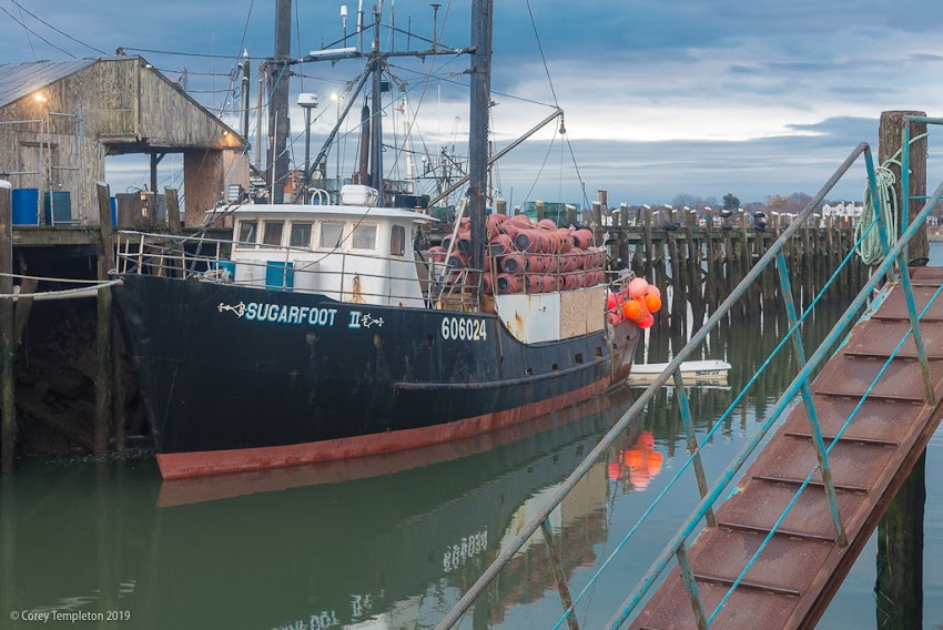 Portland, Maine USA March 2019 photo by Corey Templeton. The fishing vessel Sugarfoot II docked at Hobson's Wharf this morning.
