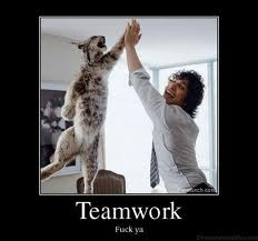teamwork funny, team work funny | High Definition Wallpapers