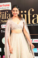 Cute Rakul Preet Singh in Deep Neck Cream Crop top Choli and Ghagra at IIFA Utsavam Awards March 2017  HD Exclusive Pics 10.JPG