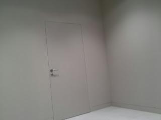 pladur-reforma-puerta y paredes