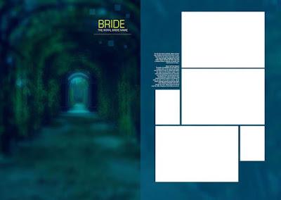 PSD Wedding Album 17x24