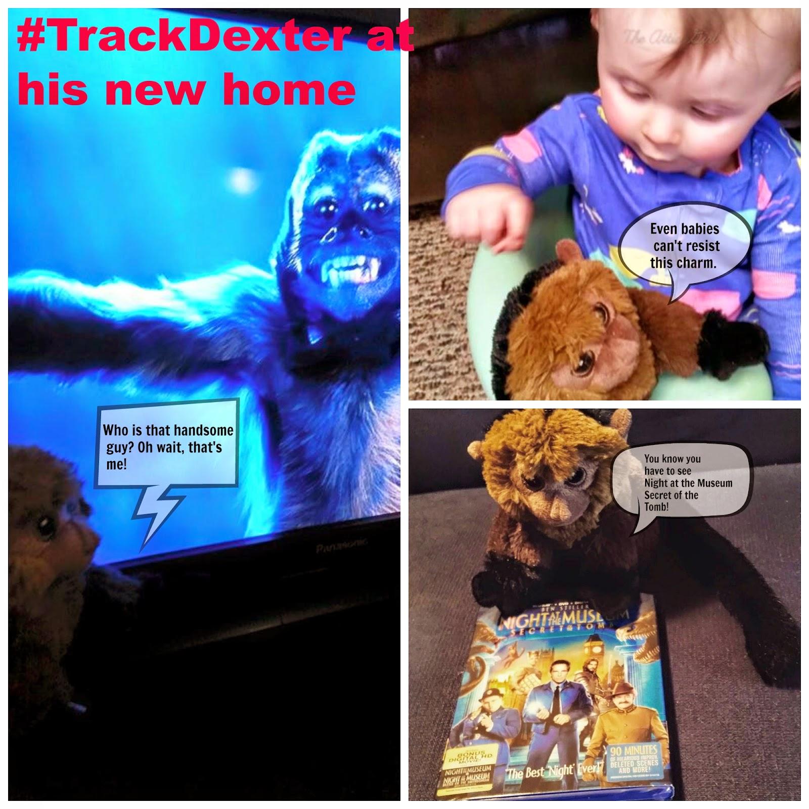 Track Dexter