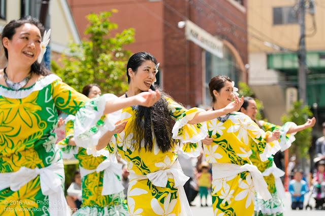 マロニエ祭り、カハレフラ&タヒチスタジオの写真 3
