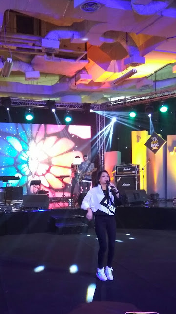 volmax band