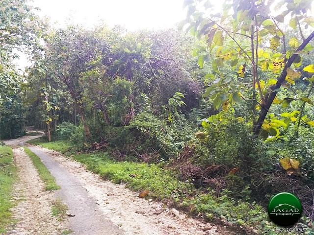 Tanah di Pajangan dekat Wisata Goa Selarong