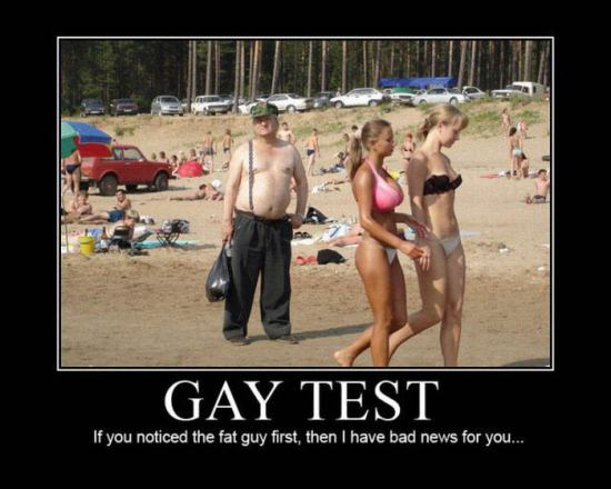 Official Gay Test