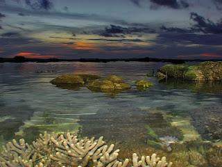 Visitindonesia; Tablolong Beach, Visiting I Of Line-Fishing Topographic Point Inwards E Nusa Tenggara