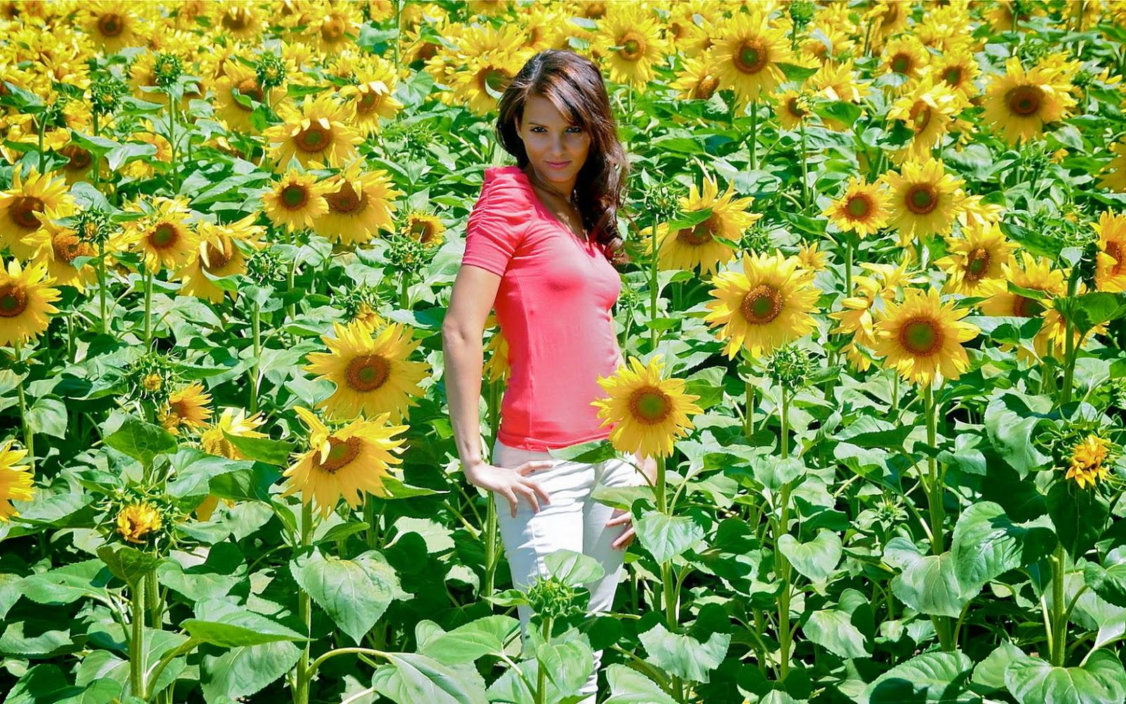 Vrouw tussen de zonnenbloemen