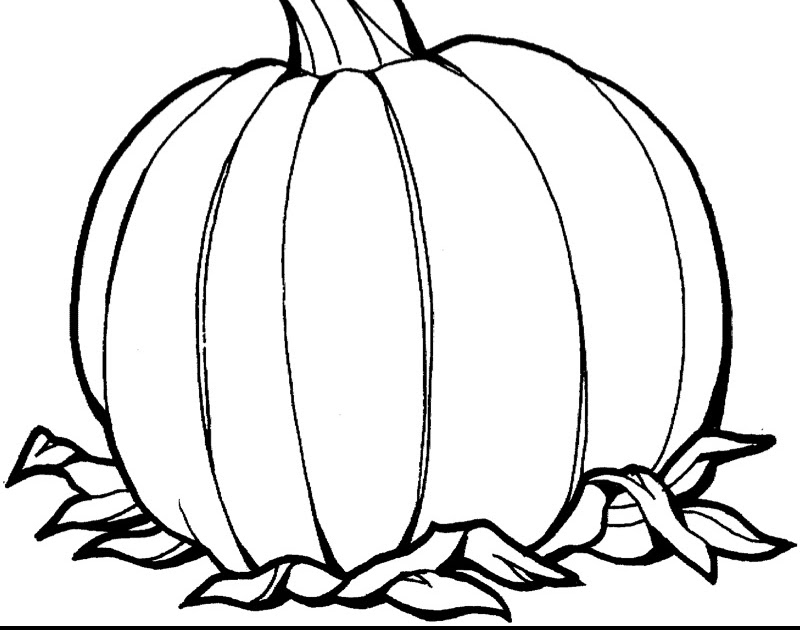 The Mommy Years: Pumpkin Coloring Sheet