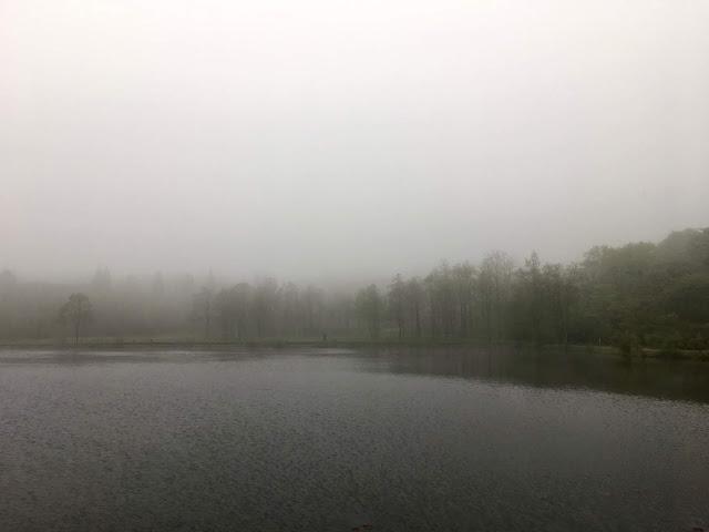 霧の妙高高原の写真