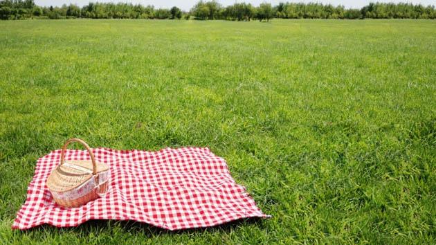 Jika Mengalami 4 Tanda Ini, Berarti Kamu Butuh Piknik