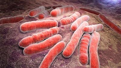 Βακτήρια στομάχου, ο σιωπηλός εχθρός του πεπτικού συστήματος